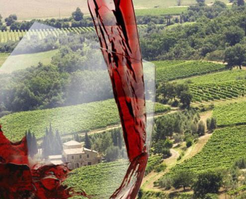 WINE TASTING TOUR IN CHIANTI